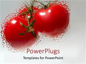 PowerPlugs: PowerPoint template with 3 blurred red tomatoes with water drops on gradient gray background