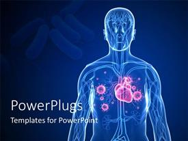 PowerPlugs: PowerPoint template with 3D graphics of a transparent human body showing the internal parts