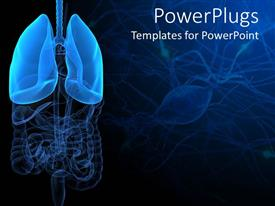 PowerPoint template displaying 3D representation of lungs and human anatomy with intestines on dark blue and black medical inspired background