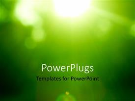 PowerPlugs: PowerPoint template with abstract green forest defocused with sunbeam rays