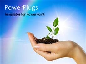 PowerPlugs: PowerPoint template with an adult female hand holding a growing green plant