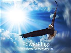 Beautiful PowerPoint enhanced with american bald eagle soaring across the sky, sunshine, clouds