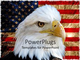 PowerPlugs: PowerPoint template with american bald eagle on vintage American flag