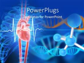 PowerPlugs: PowerPoint template with anatomy depiction of a human heart with DNA and molecular sturcture