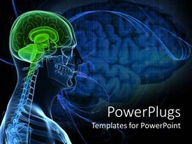 PowerPoint template displaying anatomy of a healthy brain of the human body