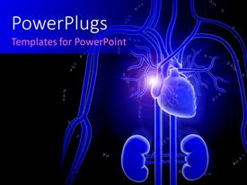 PowerPlugs: PowerPoint template with an anatomy of human being with blackish background