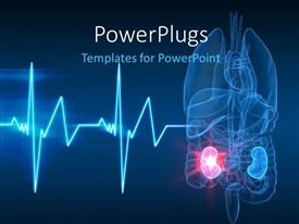 PowerPlugs: PowerPoint template with anatomy of human organs with kidney failure and ECG wave in the forefront