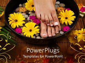 PowerPoint template displaying aromatherapy as lady puts feet in bowl with oyster shells and sunflower