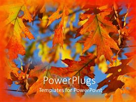 PowerPlugs: PowerPoint template with autumn fall leaves on branches with blue sky and orange border