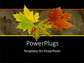PowerPlugs: PowerPoint template with autumn leaves red yellow green leaves black background