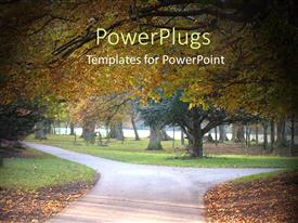 PowerPlugs: PowerPoint template with autumn park with trail orange and red leaves grass cold day