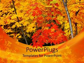 PowerPlugs: PowerPoint template with autumn view of yellow and red colored tress in a forest