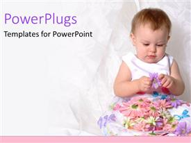 PowerPoint template displaying baby girl in white floral dress playing with purple flower on pink background