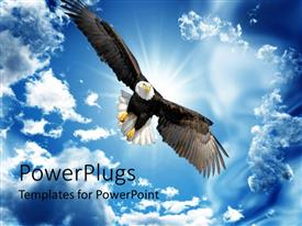 PowerPlugs: PowerPoint template with back lit Bald Eagle in flight