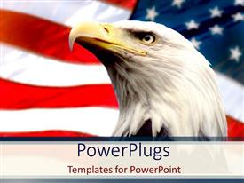 PowerPlugs: PowerPoint template with bald eagle with american flag white background