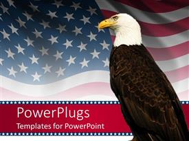 PowerPlugs: PowerPoint template with bald eagle in front of an american flag background
