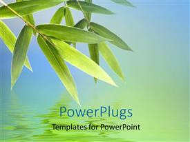 PowerPlugs: PowerPoint template with bamboo leaves with reflection on water surface