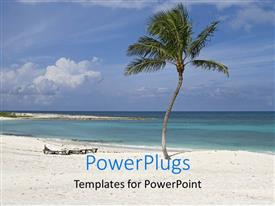 PowerPoint template displaying beautiful beach with palms and blue cloudy sky