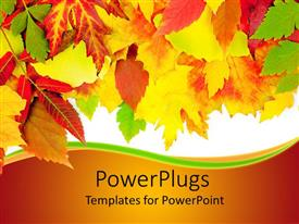 PowerPlugs: PowerPoint template with a beautiful collection of various colored leaves with white background