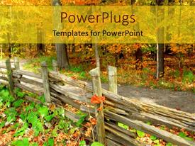 PowerPlugs: PowerPoint template with a beautiful depiction of a forest and trail passing through it