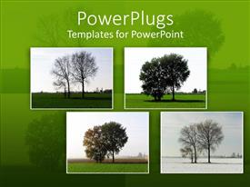 Theme featuring a beautiful depiction of various trees with green background