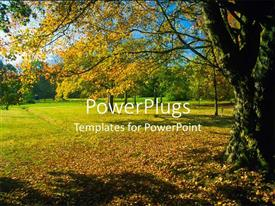 PowerPlugs: PowerPoint template with beautiful field in autumn with colorful leaves on sunny day