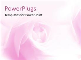 PowerPlugs: PowerPoint template with a beautiful floral template with pinkish background