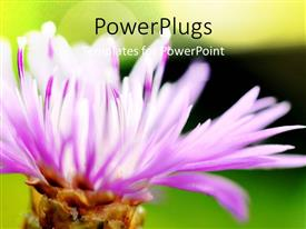 PowerPoint template displaying beautiful floral theme with green color
