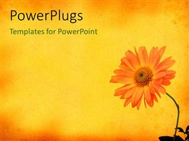 PowerPlugs: PowerPoint template with beautiful flower growing from vase on yellow nostalgic background