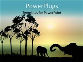 PowerPoint template displaying beautiful forest scene, two elephants playing at sunrise