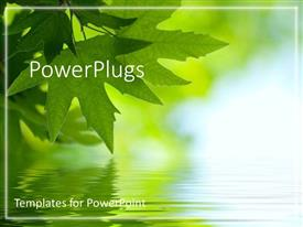 PowerPlugs: PowerPoint template with beautiful nature green leaf touching the water relaxation serene reflection of one self