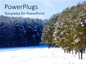 PowerPlugs: PowerPoint template with beautiful Pine forest covered with snow in winter