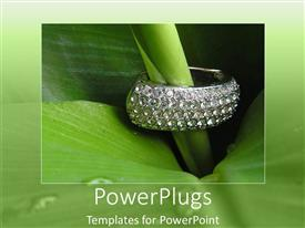 PowerPlugs: PowerPoint template with a beautiful plant with jewelry placed on it and green background