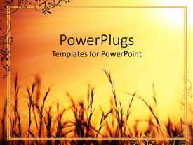 PowerPlugs: PowerPoint template with a beautiful representation of a crop with golden background