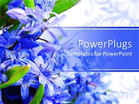 PowerPlugs: PowerPoint template with beautiful spring flowers placed on a side and their reflection in the background