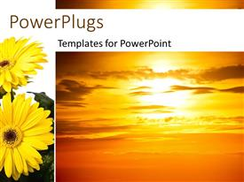 PowerPoint template displaying beautiful sunset in cloudy sky with sunflower