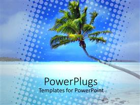 PowerPoint template displaying beautiful tropical blue beach with a leaning palm tree