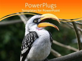 PowerPlugs: PowerPoint template with a bird with its beak open and greenery in the background