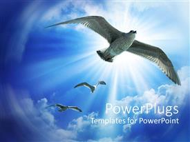 PowerPoint template displaying birds in flight, clear blue sky, sun shining
