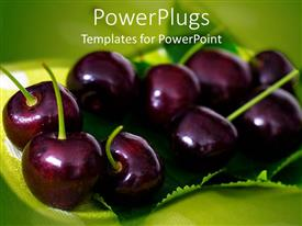 PowerPoint template displaying black cherries on green leaf, green background