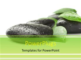PowerPlugs: PowerPoint template with spa depiction with water droplets on stones and green leaves