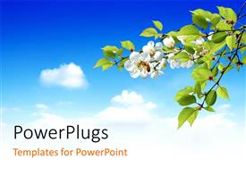 PowerPlugs: PowerPoint template with blue cloudy sky with tree and white beautiful flowers