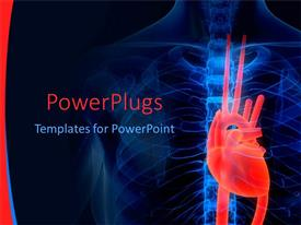PowerPlugs: PowerPoint template with blue human anatomy x-ray with red heart on black background, cardiology