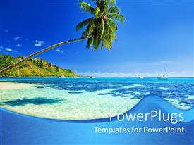 PowerPoint template displaying blue ocean and green palm tree under blue sky