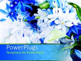 PowerPlugs: PowerPoint template with blue white spring bouquet with green leaves, flowers