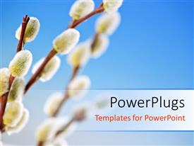 PowerPlugs: PowerPoint template with a bluish background and a number of branches