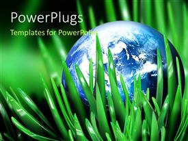 PowerPlugs: PowerPoint template with a bluish globe in a grass and place for text
