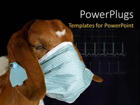PowerPoint template displaying a brown donkey wearing a facial mask on a black background