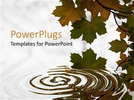 PowerPlugs: PowerPoint template with brown and green leaves with ripples in water, white background