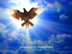 PowerPlugs: PowerPoint template with brown and white dove flying in the sunlight ad blue sky